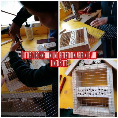 5Sterne Insektenhotel (4)